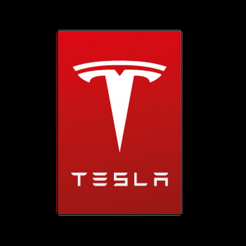 Tesla Servive